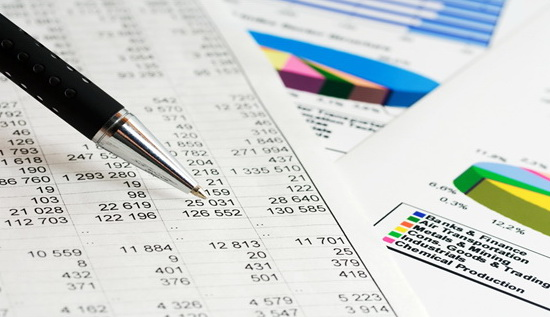 Annual audited/unaudited financial statements