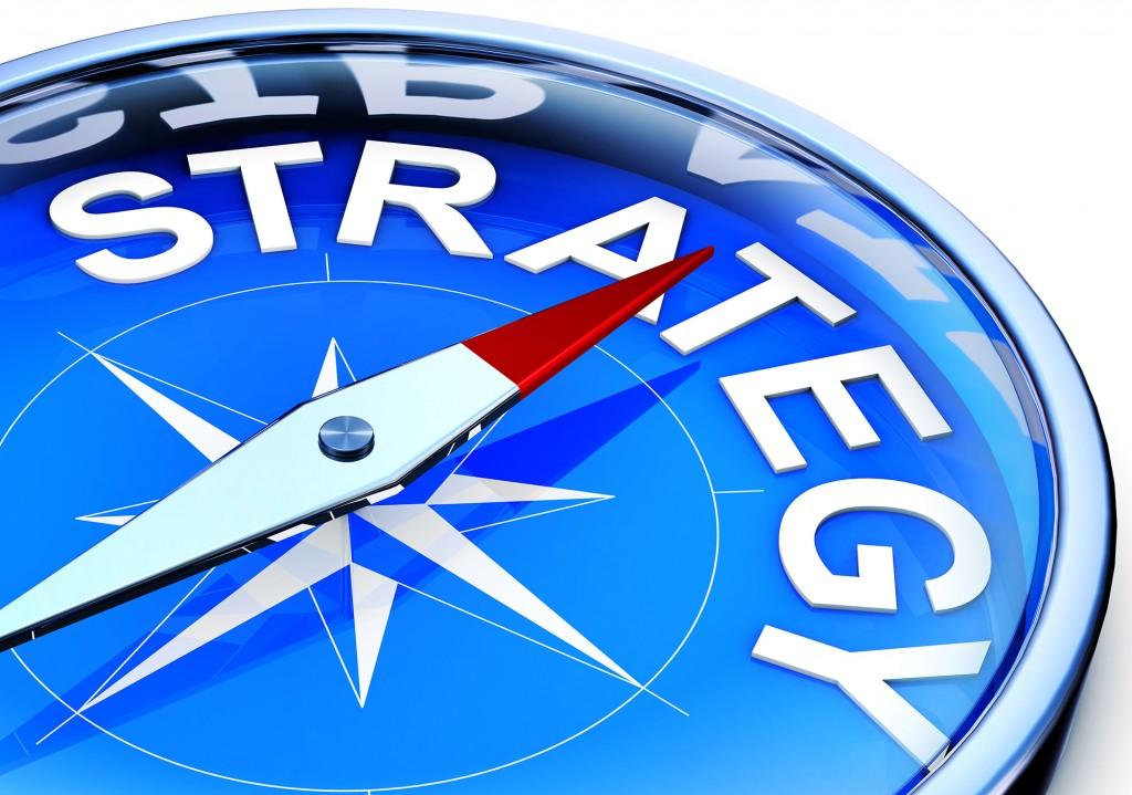 Enter the company's strategic plan