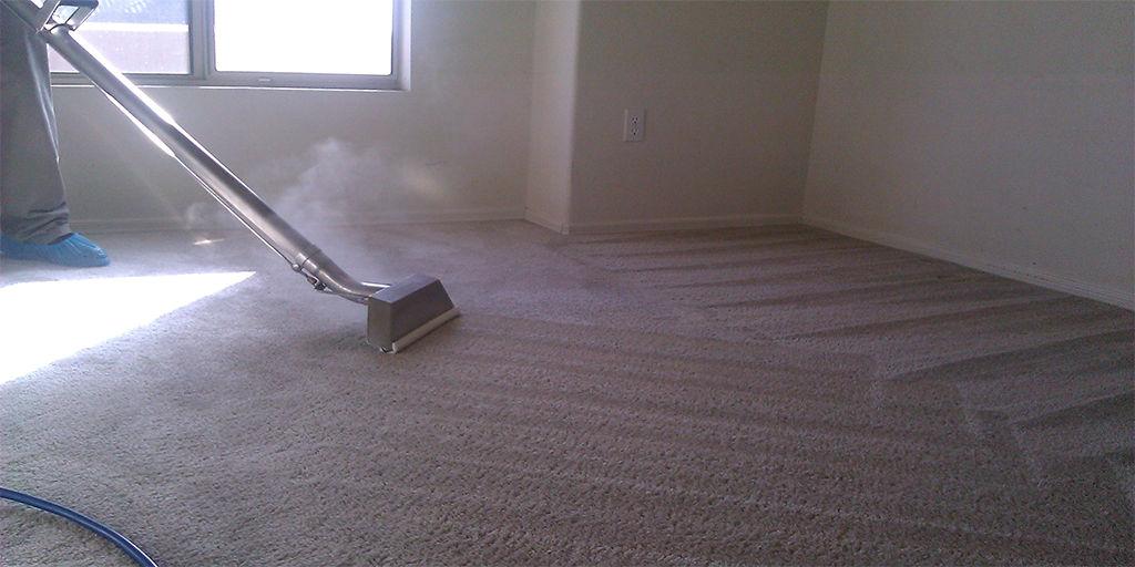 Clean the carpets professionally